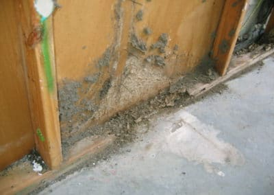 Termite damage due to lack of a termite management system being in place Picture #2.