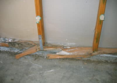 Termite damage due to lack of a termite management system being in place Picture #3.
