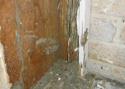 Termite damage located in a garage