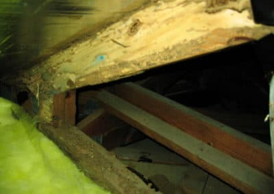 Termite damage located in a roof void