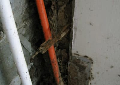 Termites gaining access through electrical conduit